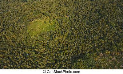 フィリピン。, 島, トロピカル, camiguin, 森林, 山。