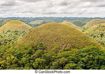 フィリピン, 風景, 丘, チョコレート