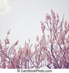フィルター, 花, 木, 効果, レトロ