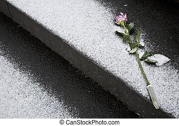 フィンランド, バラ, 記憶, 葬式
