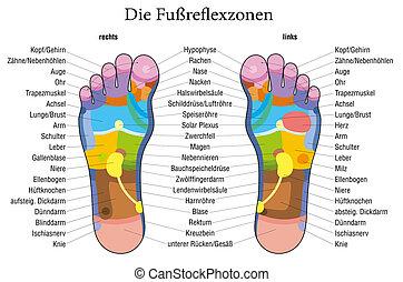 フィート, reflexology, チャート, ドイツ語, descr