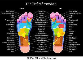 フィート, reflexology, 黒, チャート, ドイツ語