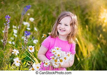 フィールド, わずかしか, 花, 女の子, デイジー