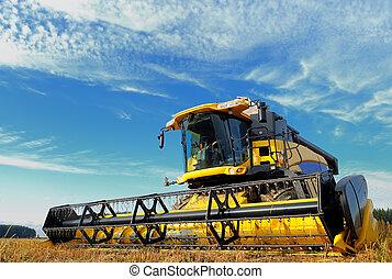 フィールド, コンバイン, 収穫する