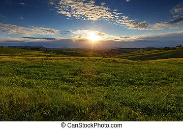 フィールド, トスカーナ, 日没, 風景