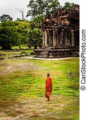 フィールド, ワット, 立つ, angkor, 修道士