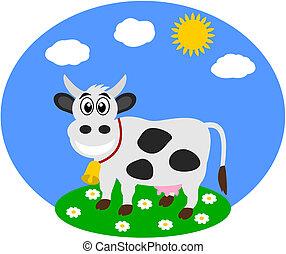 フィールド, 乳牛
