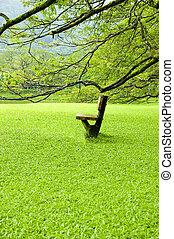 フィールド, 単一, 椅子, 緑