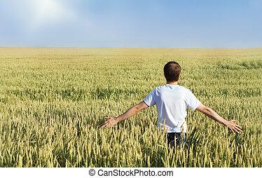 フィールド, 小麦, 人