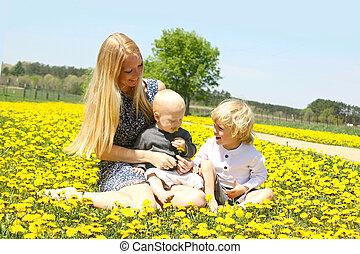 フィールド, 息子, 母, タンポポ