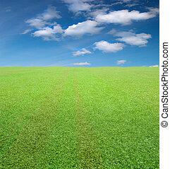 フィールド, 緑