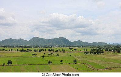フィールド, 緑, thailand.