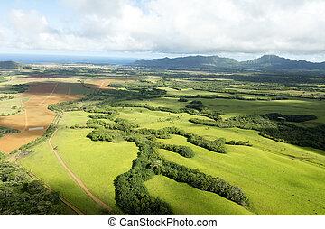 フィールド, 開いた, ハワイ, kauai