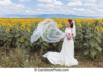 フィールド, bulgarian, 幸せ, ひまわり, 花嫁