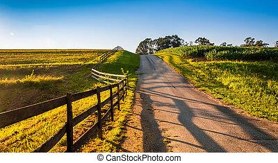 フェンス, 前方へ, a, 農場, 道, 中に, 田園, ヨーク, 郡, pennsylvania.