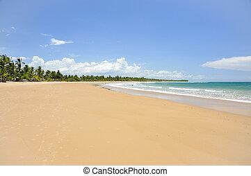 フォーラム, de, taipu, (brazil), 浜, bahia