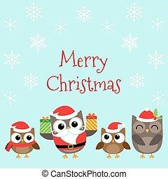 フクロウ, クリスマス, 家族