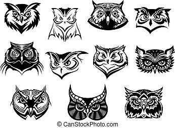 フクロウ, セット, 頭, 大きい, 黒, 白
