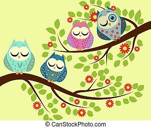 フクロウ, ブランチ, 開くこと, spy., 睡眠, 4, 木, 明るい, フクロウ, 1(人・つ), 開いた, 漫画, eye.