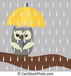 フクロウ, 傘, すてきである
