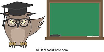 フクロウ, 勉強