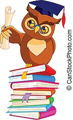 フクロウ, 帽子, 賢い, 卒業