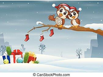 フクロウ, 恋人, ブランチ, 帽子, 木, クリスマス