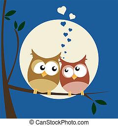 フクロウ, 愛