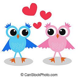 フクロウ, 愛, 2, かわいい