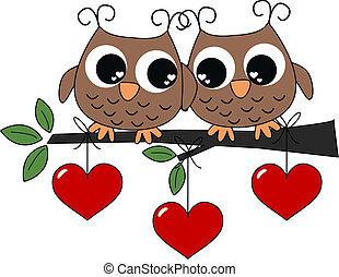 フクロウ, 愛, 2
