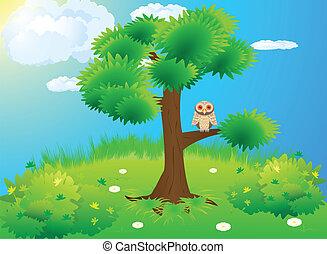 フクロウ, 木, 緑の採草地