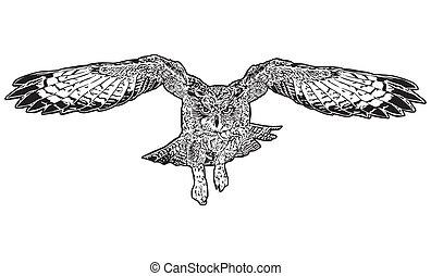 フクロウ, 飛行