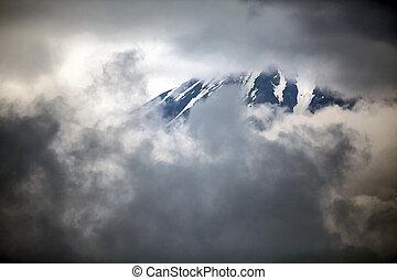 フジ, 山
