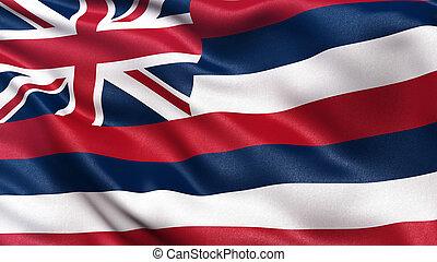 フラグを述べなさい, 私達, ハワイ