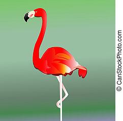 フラミンゴ, 鳥, ベクトル, eps10