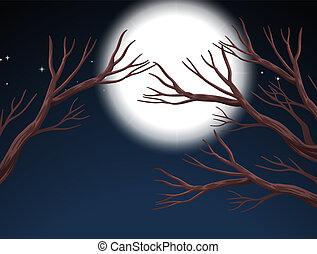 フルである, 現場, 月, 夜