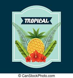 フルーツ, トロピカル