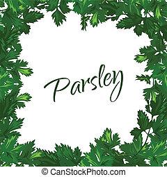 フレーム, パセリ, バックグラウンド。, ベクトル, 緑の白, greenery.