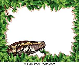 フレーム, ヘビ, 自然