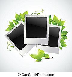 フレーム, 写真, 葉, 緑