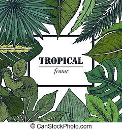 フレーム, 手, トロピカル, ベクトル, テンプレート, 引かれる, plants.