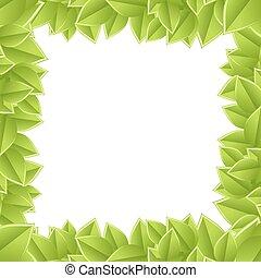 フレーム, 背景, 植物, 白