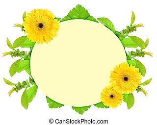 フレーム, 花, 黄色