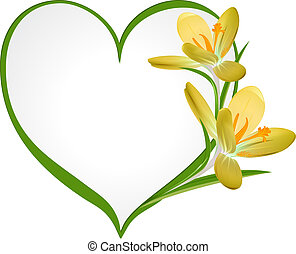フレーム, heart., 形, 黄色, クロッカス