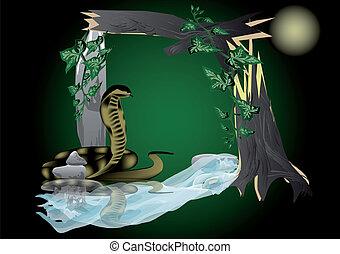 """フレーム, jungle"""", """"night"""