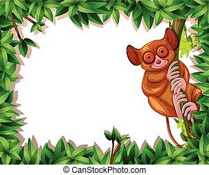 フレーム, tarsier, 自然