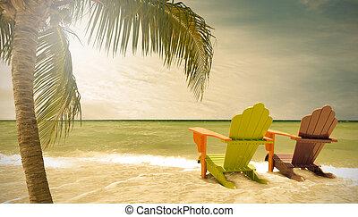 フロリダ, マイアミ, 木, ラウンジ, 椅子, やし 浜