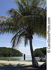 フロリダ, 湾