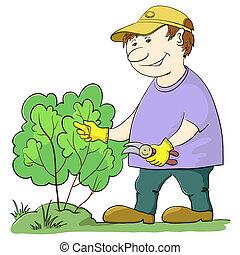 ブッシュ, 庭師, 切口