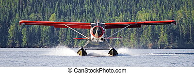 ブッシュ, 飛行機, 着陸, パイロット